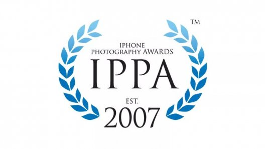 IPPA 2019 苹果摄影作品欣赏,20 位中国摄影师最终榜上有名
