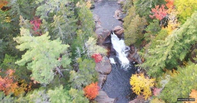 3173393|秋季山间溪水岩石树木大疆DJI拍摄的4KCC0视频素材