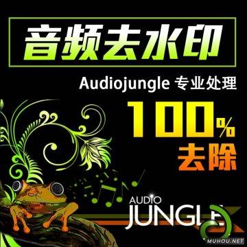 【100积分】Audiojungle音频视频去水印服务/AE模板videohive人声水印去除